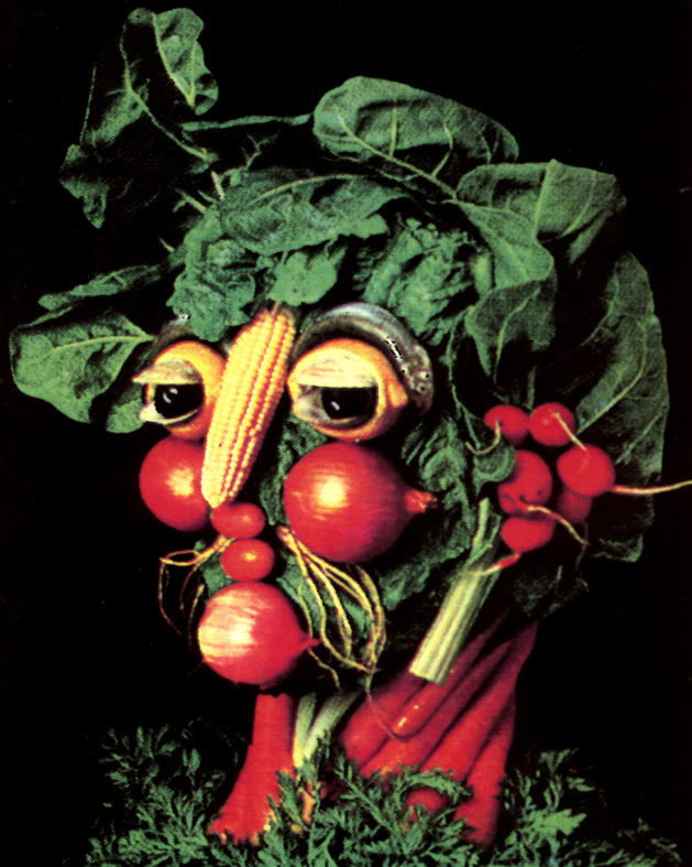 arcimboldo-like-matchbook-cover.jpg