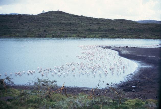tanzania-1974-006.jpg