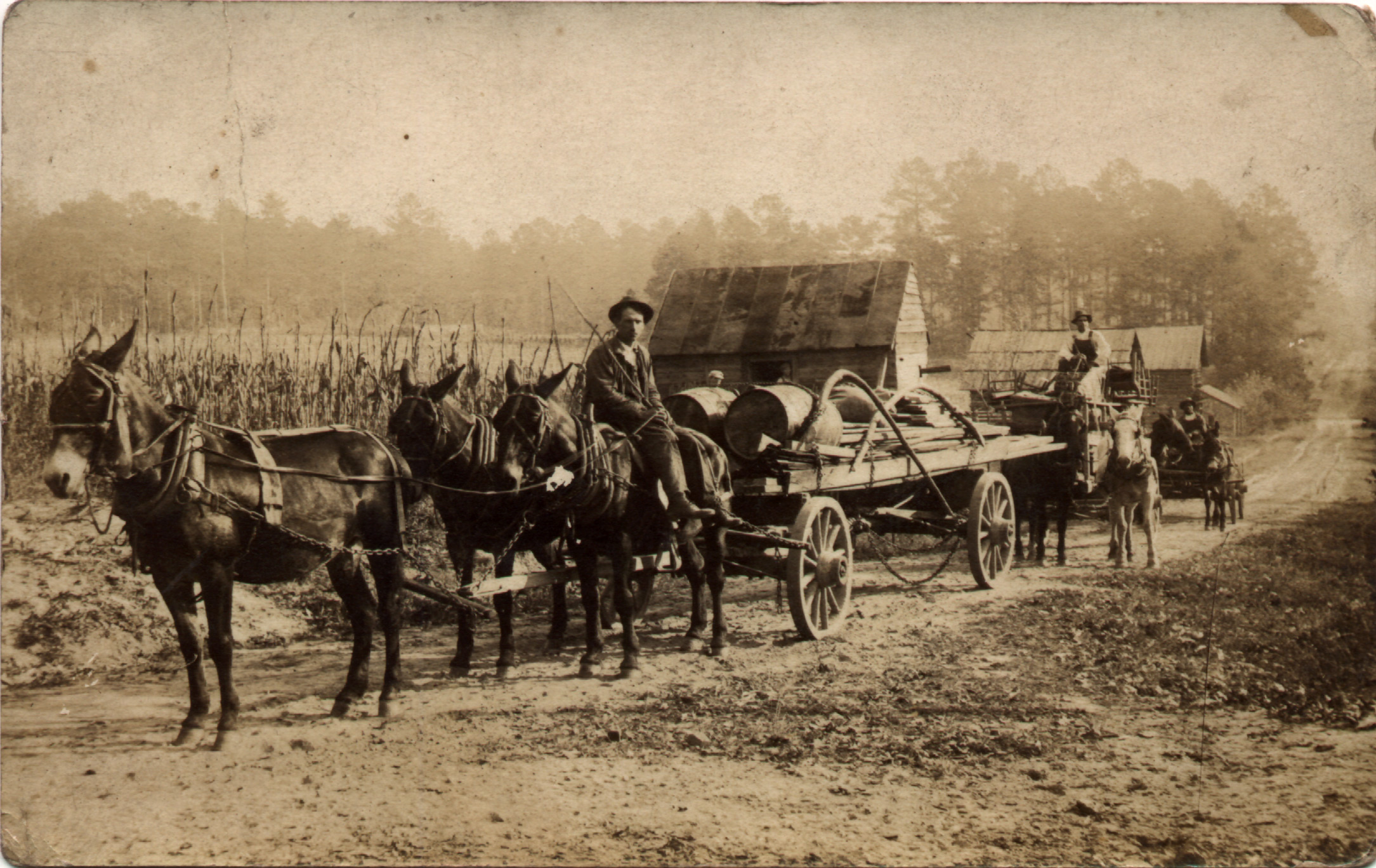 http://jrandomimage.com/images/mule-wagons.jpg